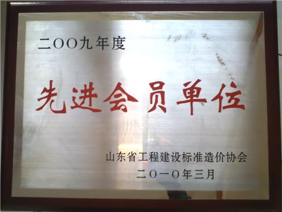 造价协会先进会员单位2009年